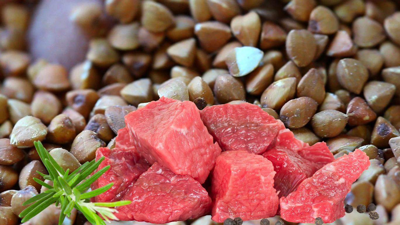 Диета на гречке с мясом