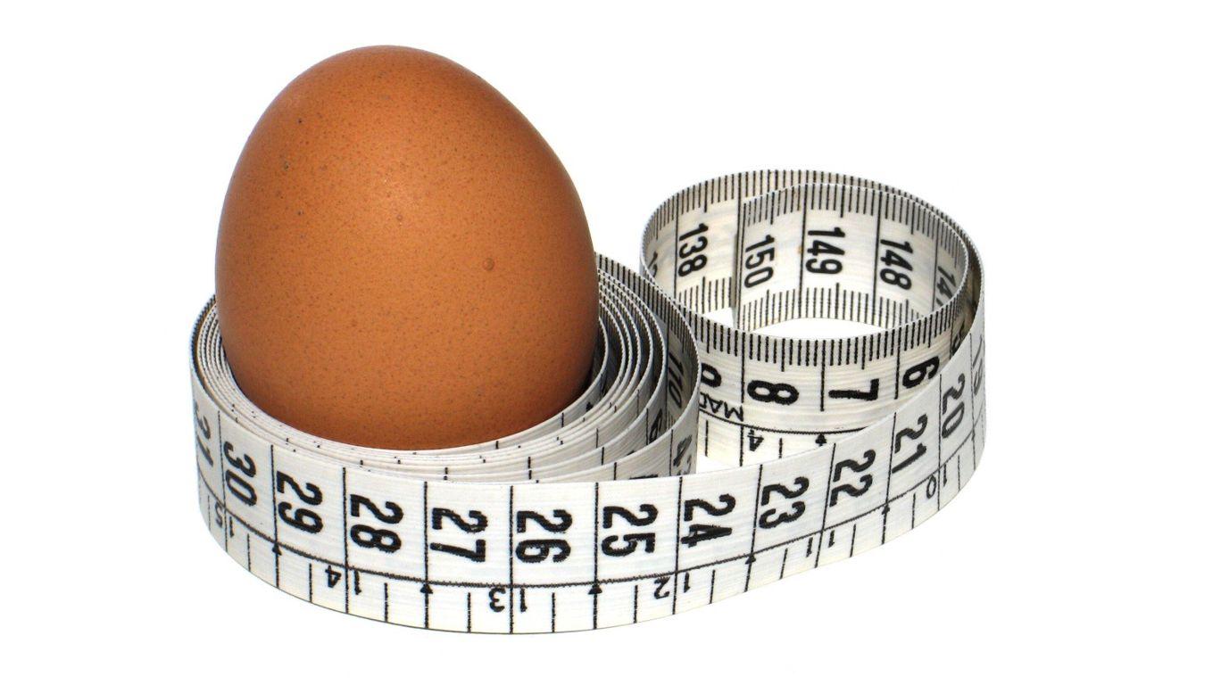 Диета на яйцах